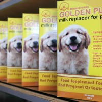 susu anjing golden puppy (milk replacer for puppies)