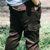harga Chino X Cargo Pants / Celana Chino / Jeans Denim / Joger / Cargo Tokopedia.com