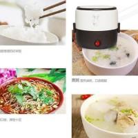 Elektrik Lunch box /mini rice cooker