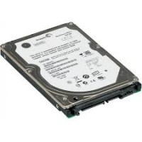 Harddisk Laptop 250Gb 2.5