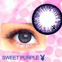harga Playboy Sweet Purple Tokopedia.com
