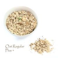 Oat Regular Plus+ 900 gram