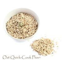 Oat Quick-Cook Plus+ 450 gram