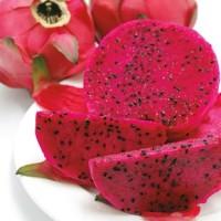 Benih Biji Buah Naga Merah - Red Dragonfruit