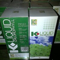 obat herbal anti kangker
