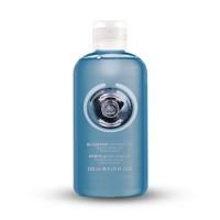 THE BODY SHOP Blueberry Shower Gel