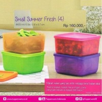 Jual Tupperware Small Summer Fresh Wadah Tempat Makan Murah