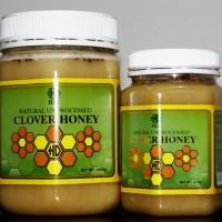 High Desert Clover Honey 1000gram
