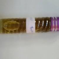 Minyak Seribu Bunga 100 % non Alcohol Dari Mekah 5 ML
