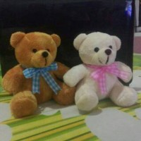 Boneka teddy/beruang/souvenir ultah/wedding/hampers/gift