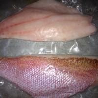Fillet Ikan Kakap Merah ( Skin on )