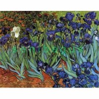 PR051x - Irises - van Gogh - 20R PVC - lukisan