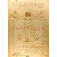 PR003x - Vitruvian Man - Leonardo da Vinci - 16R PVC - lukisan
