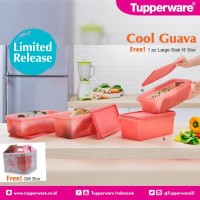 Tupperware Cool Guava - Paket Wadah Di Kulkas Dengan Warna Peach