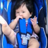 Kursi Bayi di Mobil (car seat Pliko)