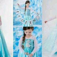 PRINCESS ELSA (FROZEN) DRESS