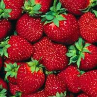 Mount Baker 20ml Strawberry 50/50 Nic 0mg