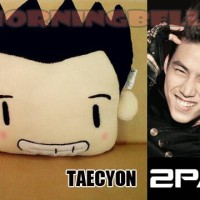 Bantal Korea 2PM Taecyeon