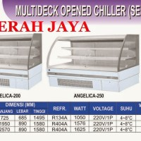 MULTIDECK OPENED CHILLER