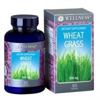 harga Wellness  Wheat Grass 500mg (60) Tokopedia.com
