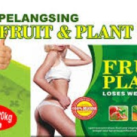 FRUIT N PLANT / KAPSUL PELANGSING USA ORIGINAL