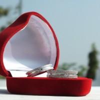 harga CINCIN TUNANGAN ORIGINAL - Silver Metalic Ring Tokopedia.com