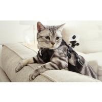 Xiaomi Yi Cat Harness for Xiaomi Yi & GoPro - Black
