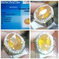 Natural Yellow Sapphire Big Size 9,91 cts + Memo + Ring Perak