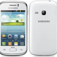 Samsung Galaxy Young New S6310