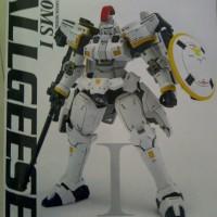 Gundam MG 1/100 Tallgeese I Dragon momoko