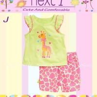 2pc NEXT1 ~ Giraffe