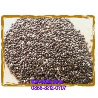 harga Organic Black Chia Seed 1kg Tokopedia.com
