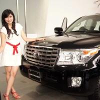 Body Cover Sarung Tutup Mobil Land Cruiser