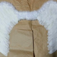 Sayap Bidadari / Angel wings Size L