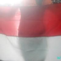 harga bendera 80x120cm/ bendera indonesia/ bendera merah putih Tokopedia.com