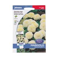 Johnsons Seeds Marigold (African) Vanilla F1