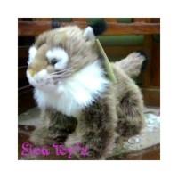 harga Boneka Kucing Hutan (lynx) Tokopedia.com