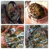 Jual bahan/bongkahan batu pancawarna black brutal Tasik Murah