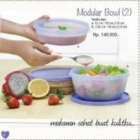 Modular Bowl Set Tupperware (2)
