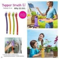 Tupperware Tupper Brush Tupperbrush Sikat Botol 310ml 500ml 750ml