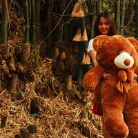Jual Boneka Beruang Teddy Bear Cokelat Jumbo 120 CM Besar Banget Murah