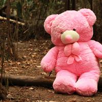 Boneka Beruang Teddy Bear Pink Super Jumbo 120 CM