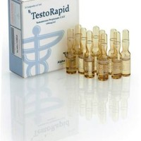 harga Testorapid Alpha Pharma / Test Prop Testosterone Propionate Tokopedia.com