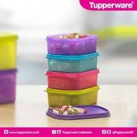 Jual Mini Rect Low Tupperware Murah