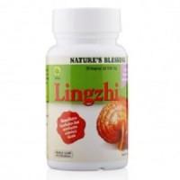 Jamur Lingzhi 30 Kapsul - gula darah, tekanan dara