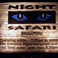 Night Safari (tiket dewasa)