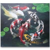 Harga Ikan Koi Travelbon.com
