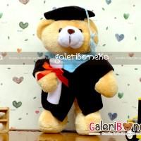 Boneka Wisuda Teddy Bear ( BT - 1202 )