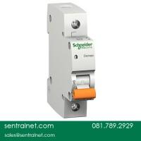 Schneider MCB Domae - DOM11340SNI - 6a