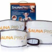 Sauna Pro 3